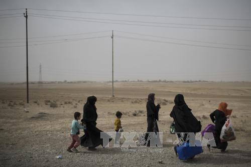 IS sát hại 40 cựu sĩ quan Iraq - Ảnh 1