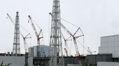 Hệ thống làm mát lò phản ứng Fukushima tê liệt sau động đất, sóng thần  - Ảnh 1