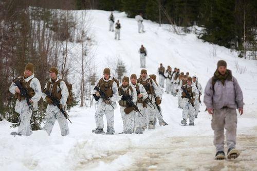 Mỹ chuẩn bị triển khai 4.000 binh lính đến sát biên giới Nga - Ảnh 2