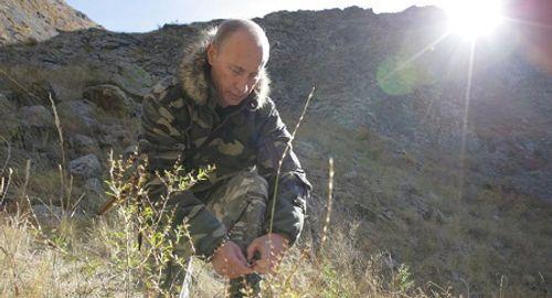 Tổng thống Putin ngủ qua đêm trong rừng taiga - Ảnh 1