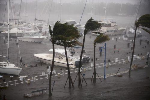 Siêu bão Irma tiếp tục tấn công Mỹ, ít nhất 9 người chết - Ảnh 4