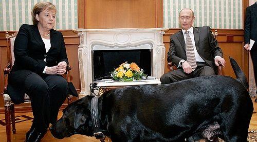 Điện Kremlin: Tổng thống Nga Putin bị tạp chí Đức xúc phạm nặng nề - Ảnh 2