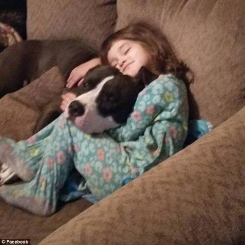 Ông bà bất cẩn, bé 4 tuổi tử vong khi tìm kẹo lại thấy súng - Ảnh 3
