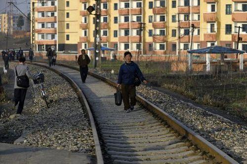 Triều Tiên xin viện trợ nhân đạo do dịch cúm bùng phát - Ảnh 1