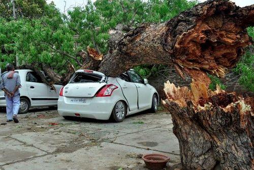 Bão cát càn quét miền Bắc Ấn Độ, hơn 170 người thương vong - Ảnh 3