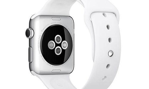 Apple Watch sẽ nhận diện được chủ nhân thông qua nhịp tim? - Ảnh 1