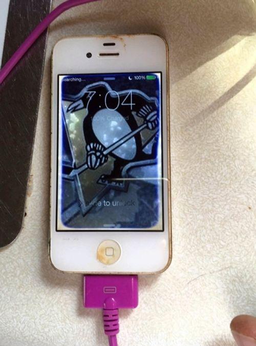 """iPhone 4 chìm 1 năm dưới đáy hồ vẫn """"chạy ngon lành"""" - Ảnh 2"""