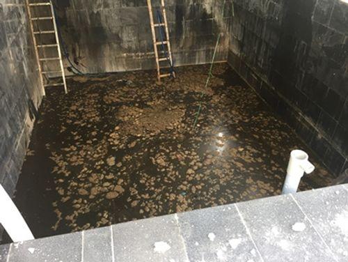 5 công nhân tử vong dưới hầm nước mắm ở Phú Yên - Ảnh 1