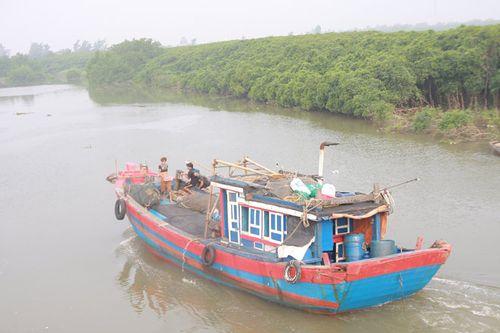 Tàu chở than và 13 người mất tích trong đêm mưa bão - Ảnh 1