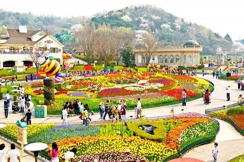 Viết những kỷ niệm Seoul – kinh đô tráng lệ của Hàn Quốc cùng Saigoncholon Tourist - Ảnh 4