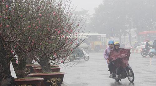 Dự báo thời tiết ngày 10/2: Giảm 6 độ C, miền Bắc lại rét đậm kèm mưa - Ảnh 1