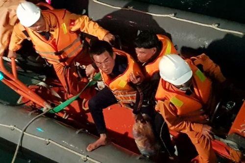 Bốn thuyền viên mất tích do tàu chìm do gặp thời tiết xấu - Ảnh 1