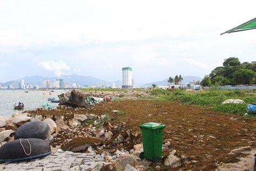 Dự án 33 triệu USD lấn Vịnh Nha Trang bị thu hồi giấy chứng nhận đầu tư - Ảnh 1