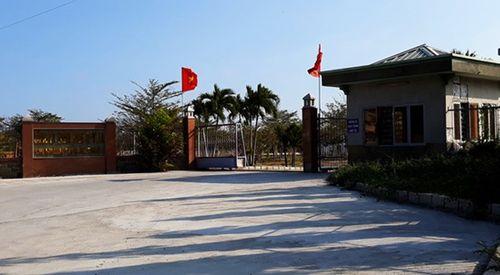 Công ty nệm đón hàng trăm khách Trung Quốc trái phép mỗi ngày - Ảnh 1