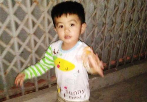 Tìm thấy bé trai 3 tuổi sau một đêm mất tích ở Thái Bình - Ảnh 1