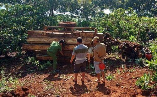 Lật xe công nông chở gỗ trong đêm, 3 người thương vong - Ảnh 1
