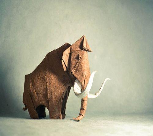 Ngắm bộ sưu tập origami động vật sinh động của nghệ sĩ Tây Ban Nha - Ảnh 2