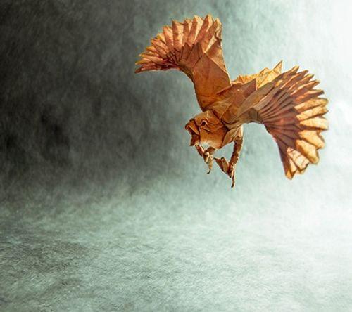 Ngắm bộ sưu tập origami động vật sinh động của nghệ sĩ Tây Ban Nha - Ảnh 5