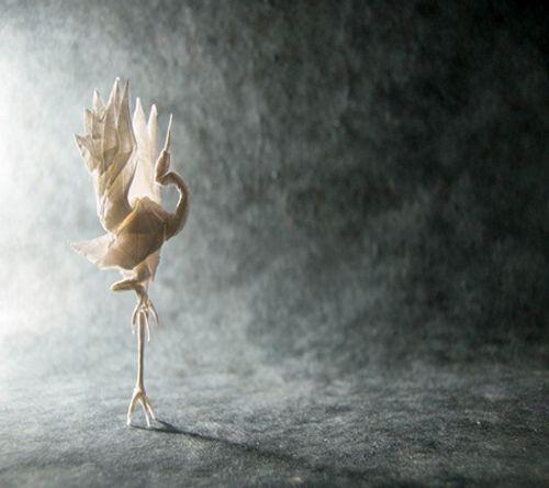 Ngắm bộ sưu tập origami động vật sinh động của nghệ sĩ Tây Ban Nha - Ảnh 1
