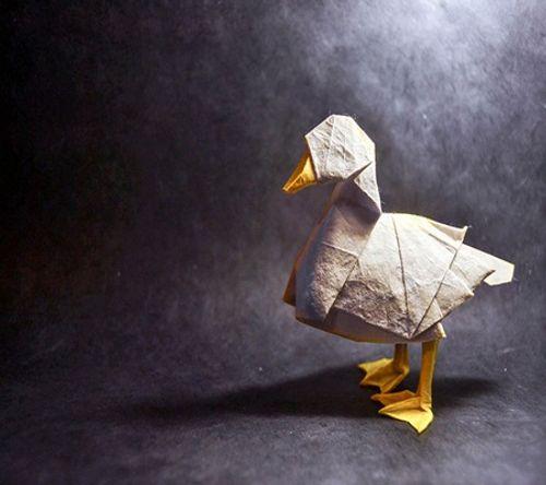 Ngắm bộ sưu tập origami động vật sinh động của nghệ sĩ Tây Ban Nha - Ảnh 8