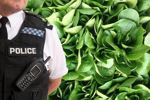 Chồng báo cảnh sát vì vợ cho con ăn chay - Ảnh 1