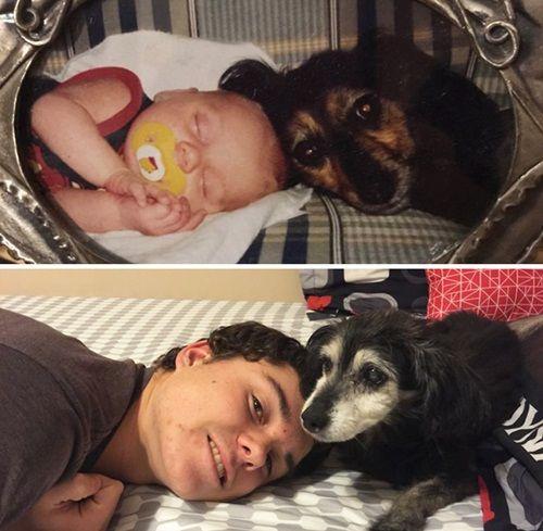 Cảm động chùm ảnh những chú chó và chủ cùng nhau lớn lên - Ảnh 2
