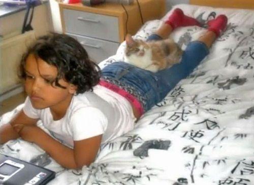 """Ngạc nhiên xem quá trình """"lột xác"""" của chú mèo 'xấu xí' nhờ phẫu thuật thẩm mỹ - Ảnh 6"""