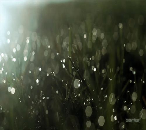 Hồ Trung Hòa – Đà Nẵng đẹp như tiên cảnh trong mắt biker Ngô Minh Tú - Ảnh 4