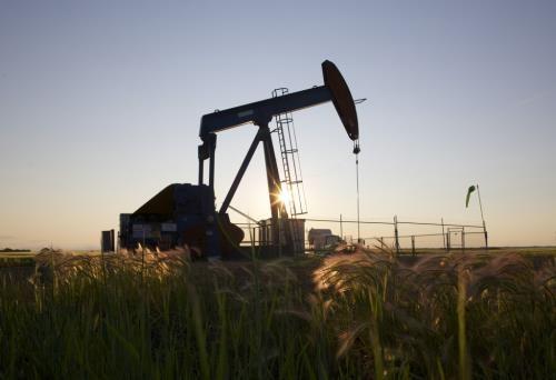 Giá dầu giảm sau khi đạt đỉnh cao kỷ lục - Ảnh 1