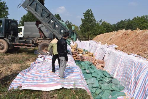 Quảng Bình tiêu hủy hơn 600 tấn hải sản chứa Cadimi vượt ngưỡng - Ảnh 1