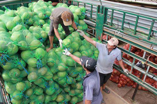 Thương lái Trung Quốc gom hàng, dừa khô 'sốt' giá - Ảnh 1