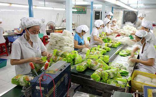 Xuất khẩu rau quả có thể vượt qua lúa gạo - Ảnh 1