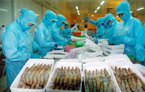 """Xuất khẩu thủy sản sang Trung Quốc: Thị trường 20 tỷ đô có """"dễ ăn""""? - Ảnh 1"""