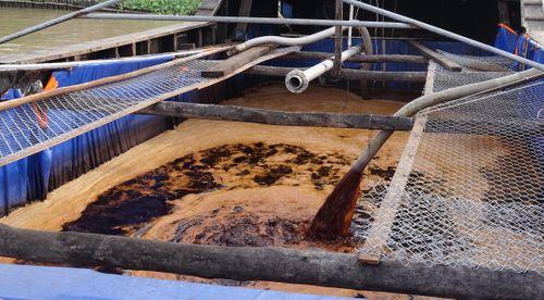 Xả thải ra sông Hậu, một doanh nghiệp bị phạt gần 900 triệu đồng - Ảnh 1