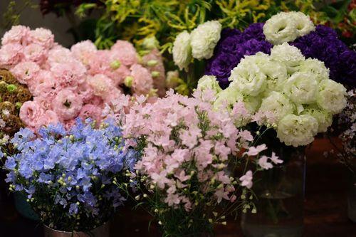 """""""Chán"""" hoa nội, cánh mày râu đặt hoa nhập khẩu giá vài trăm nghìn/bông ngày 8/3 - Ảnh 3"""