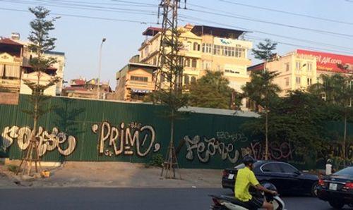 """Hà Nội trồng 1 triệu cây xanh: Không thể cứ """"có đất là trồng"""" - Ảnh 1"""