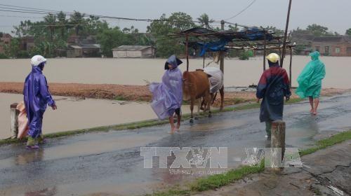 Quảng Bình: Giao thông chia cắt, 1 người chết do mưa lũ - Ảnh 2