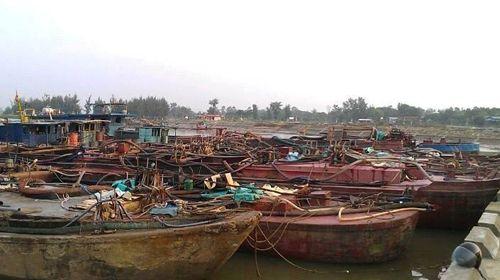 Phạt hơn 300 triệu đối với 7 chủ tàu hút cát lậu trên sông  - Ảnh 1