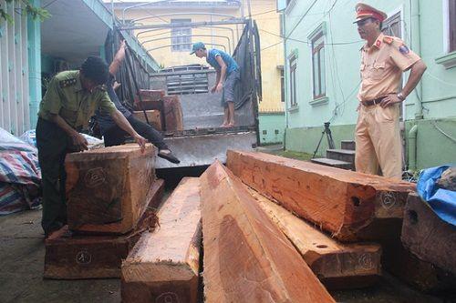 CSGT Thừa Thiên - Huế liên tiếp bắt giữ xe tải chở gỗ lậu - Ảnh 2