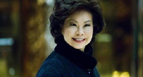 Donald Trump chọn một phụ nữ gốc Hoa làm Bộ trưởng Giao thông - Ảnh 1