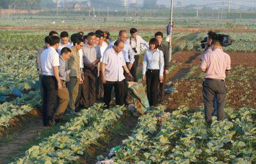 Thủ tướng bất ngờ đến chợ Long Biên lúc tờ mờ sáng  - Ảnh 7