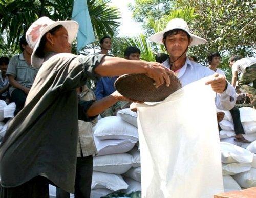 Thủ tướng Chính phủ chỉ đạo hỗ trợ hơn 10.000 tấn gạo cho 12 tỉnh - Ảnh 1