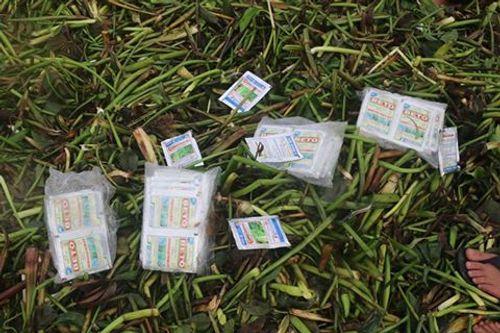 Xuất hiện hàng ngàn bao thuốc trừ sâu, thuốc diệt cỏ dọc bờ biển - Ảnh 1