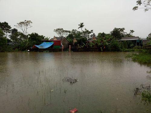Chính quyền xã tắc trách, nguy cơ đuối nước ở... sân vận động - Ảnh 2