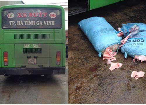 Bắt giữ xe buýt chở hơn 200kg xương lợn bốc mùi hôi thối - Ảnh 1