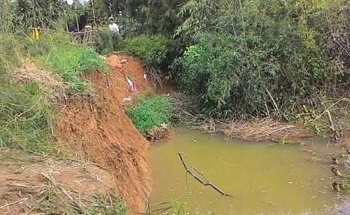 Thừa Thiên – Huế: Sạt lở nghiêm trọng bờ sông Bồ, đe dọa gần 100 hộ dân - Ảnh 1
