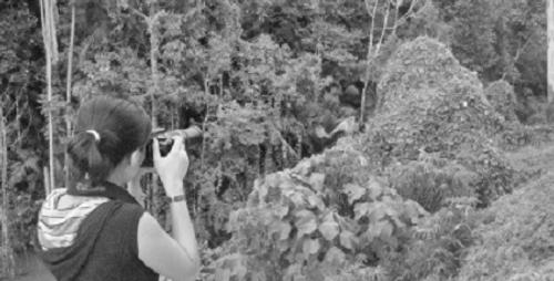 Cô gái Hà thành và những dự án bảo vệ động vật hoang dã xuyên quốc gia  - Ảnh 2