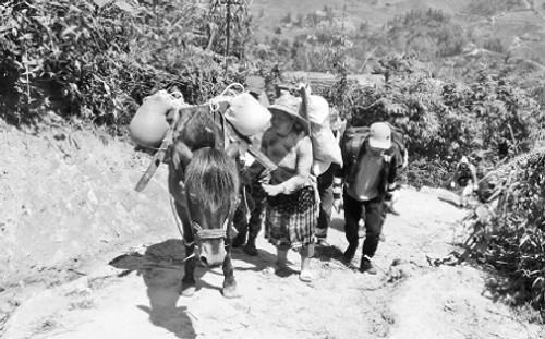 """Hành trình """"khuất phục"""" Bạch Mộc Lương Tử đỉnh núi cao thứ ba Việt Nam  - Ảnh 2"""