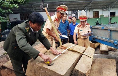 Tạm giữ xe tải chở hơn 20m3 gỗ ghi sai với hồ sơ gốc - Ảnh 2