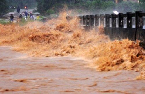 Quảng Ngãi sơ tán khẩn cấp hàng trăm hộ dân tránh lũ - Ảnh 2